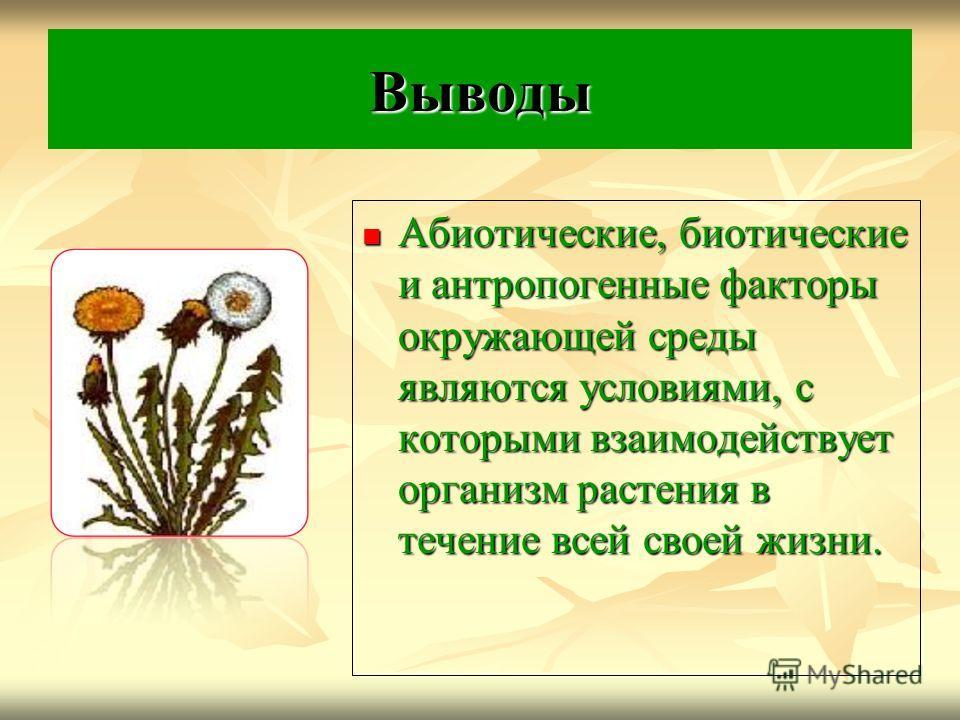 Выводы Абиотические, биотические и антропогенные факторы окружающей среды являются условиями, с которыми взаимодействует организм растения в течение всей своей жизни. Абиотические, биотические и антропогенные факторы окружающей среды являются условия