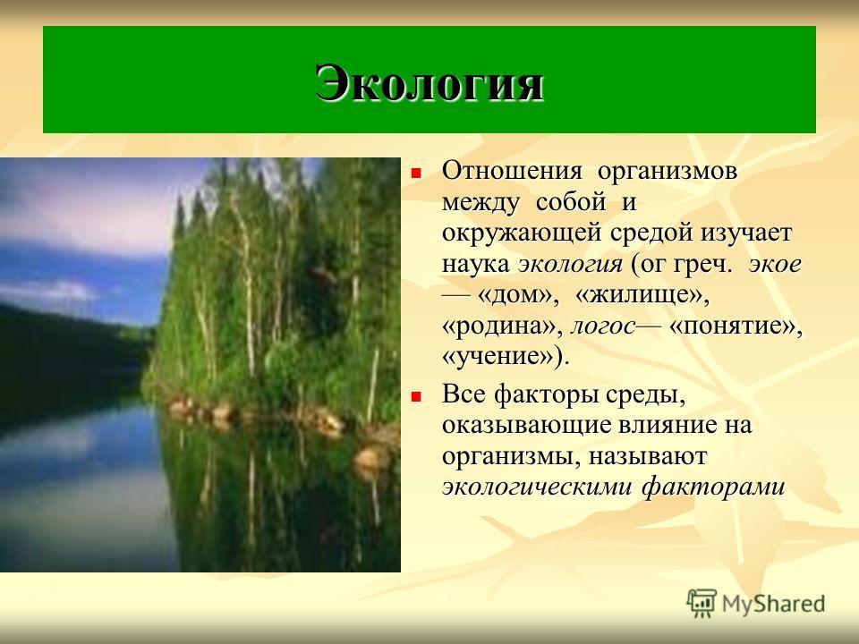 Экология Отношения организмов между собой и окружающей средой изучает наука экология (ог греч. экое «дом», «жилище», «родина», логос «понятие», «учение»). Отношения организмов между собой и окружающей средой изучает наука экология (ог греч. экое «дом