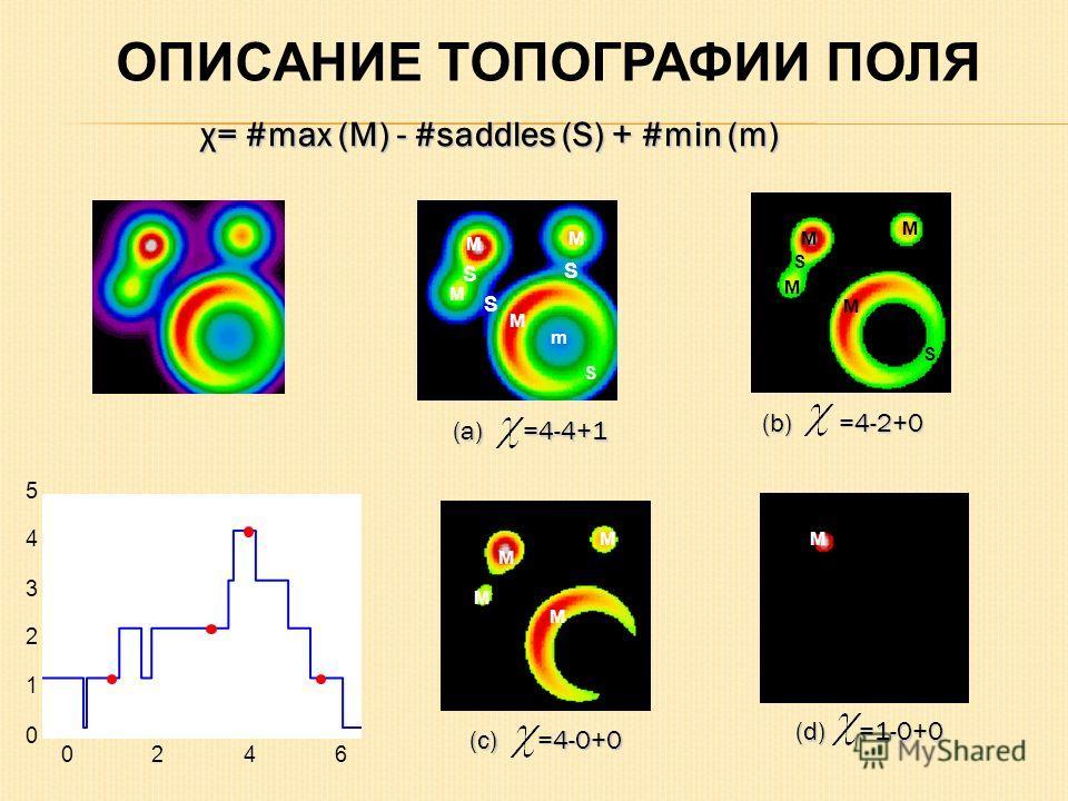 M M M M S S S m S M M M M S S M M M M M 0246 0 1 2 3 4 5 (a) =4-4+1 (b) =4-2+0 (c) =4-0+0 (d) =1-0+0 ОПИСАНИЕ ТОПОГРАФИИ ПОЛЯ χ= #max (M) - #saddles (S) + #min (m)
