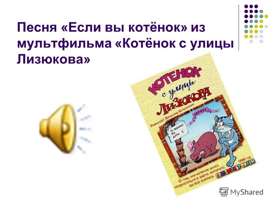 Песня «Если вы котёнок» из мультфильма «Котёнок с улицы Лизюкова»
