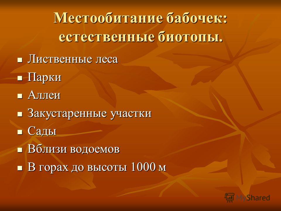 Местообитание бабочек: естественные биотопы. Лиственные леса Лиственные леса Парки Парки Аллеи Аллеи Закустаренные участки Закустаренные участки Сады Сады Вблизи водоемов Вблизи водоемов В горах до высоты 1000 м В горах до высоты 1000 м