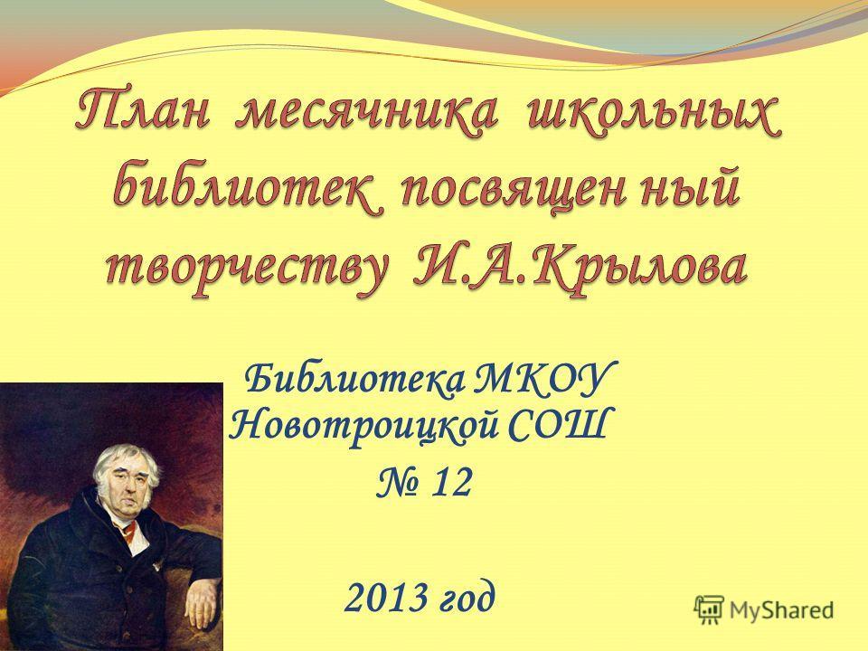 Библиотека МКОУ Новотроицкой СОШ 12 2013 год