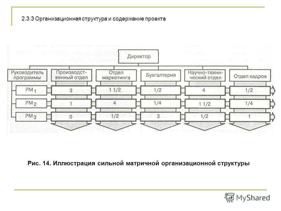 Рис. 14. Иллюстрация сильной матричной организационной структуры 2.3.3 Организационная структура и содержание проекта