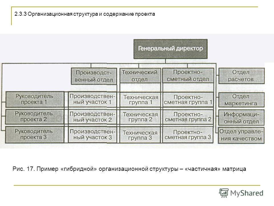 Рис. 17. Пример «гибридной» организационной структуры – «частичная» матрица 2.3.3 Организационная структура и содержание проекта
