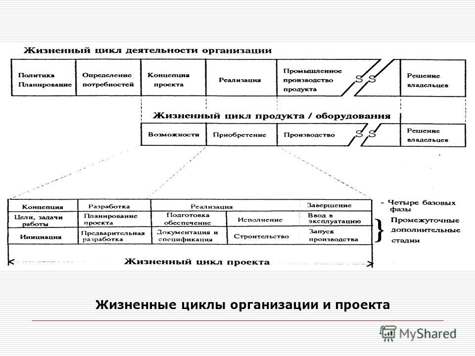 Жизненные циклы организации и проекта