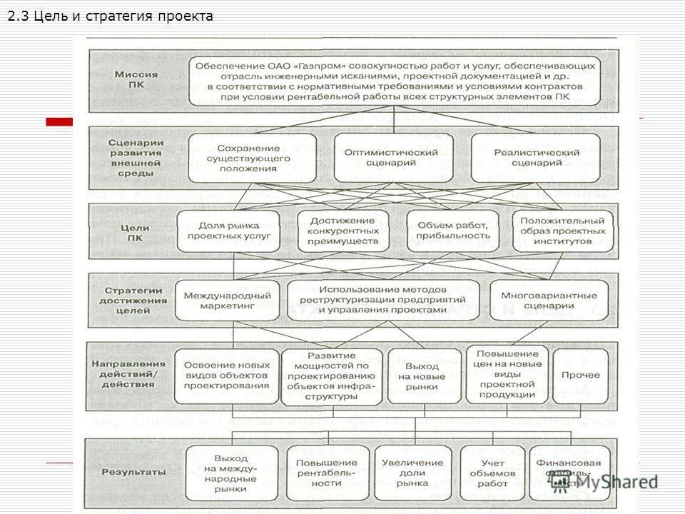 2.3 Цель и стратегия проекта