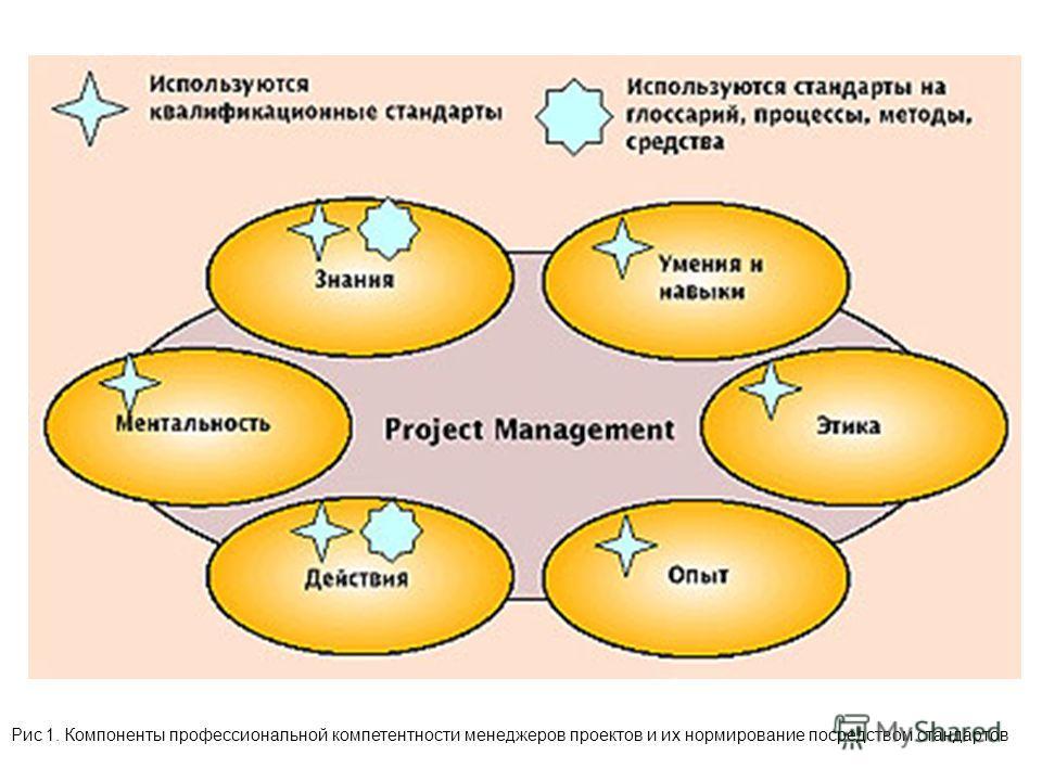 Рис 1. Компоненты профессиональной компетентности менеджеров проектов и их нормирование посредством стандартов