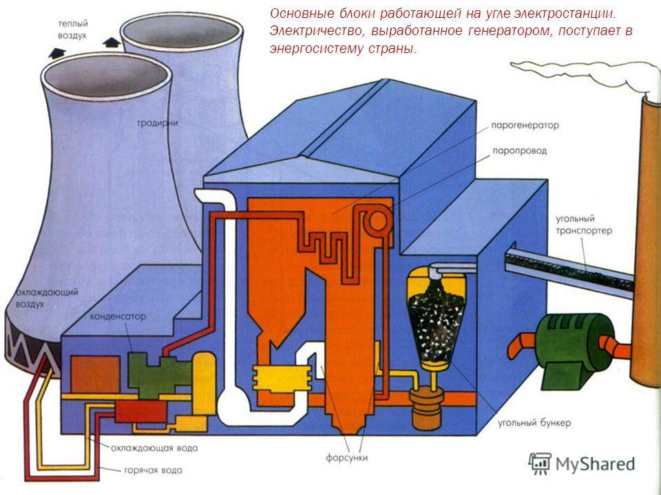 Основные блоки работающей на угле электростанции. Электричество, выработанное генератором, поступает в энергосистему страны.