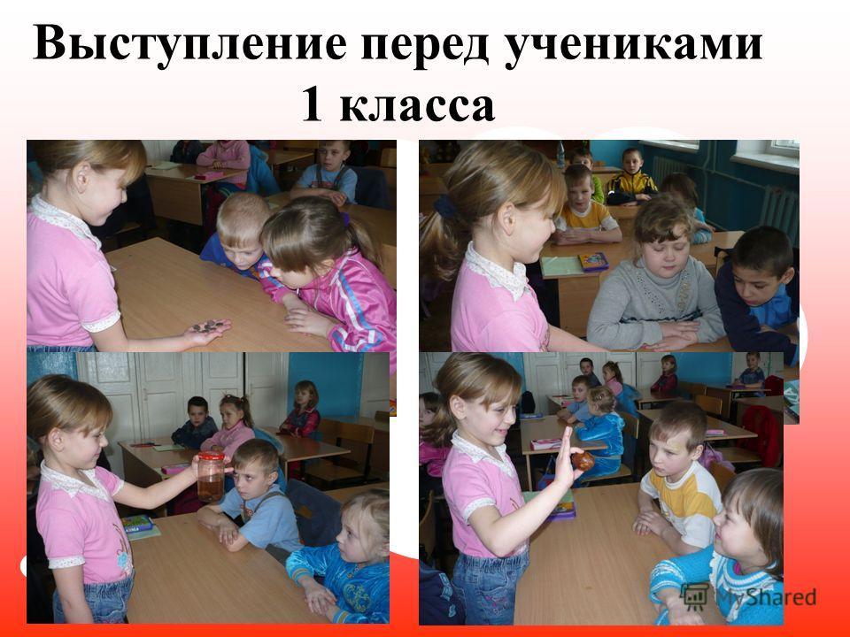 Выступление перед учениками 1 класса
