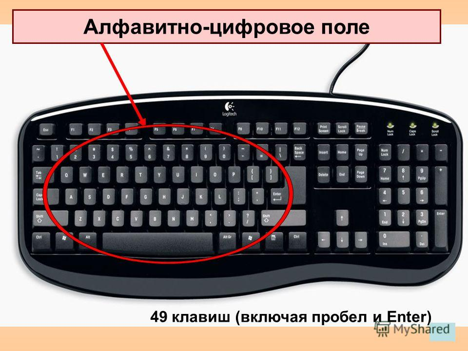 Алфавитно-цифровое поле 49 клавиш (включая пробел и Enter)