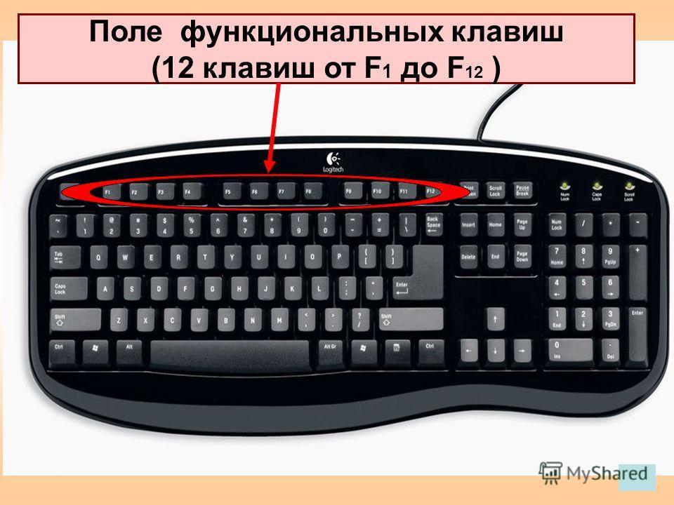 Поле функциональных клавиш (12 клавиш от F 1 до F 12 )