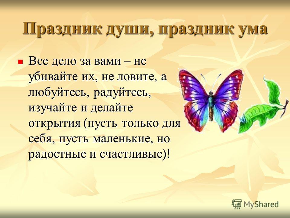 Праздник души, праздник ума Все дело за вами – не убивайте их, не ловите, а любуйтесь, радуйтесь, изучайте и делайте открытия (пусть только для себя, пусть маленькие, но радостные и счастливые)! Все дело за вами – не убивайте их, не ловите, а любуйте