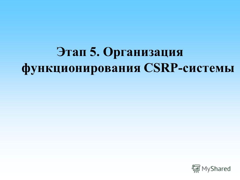 Этап 5. Организация функционирования CSRP-системы