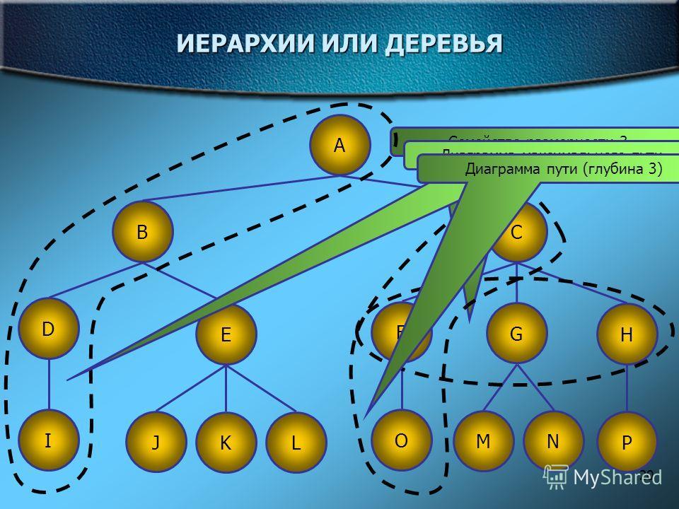 20 ИЕРАРХИИ ИЛИ ДЕРЕВЬЯ A BC D F G HE I LK J O P NM Семейство размерности 3 Диаграмма максимального пути Диаграмма пути (глубина 3)