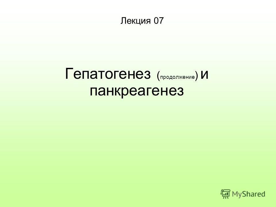 Лекция 07 Гепатогенез ( продолжение ) и панкреагенез