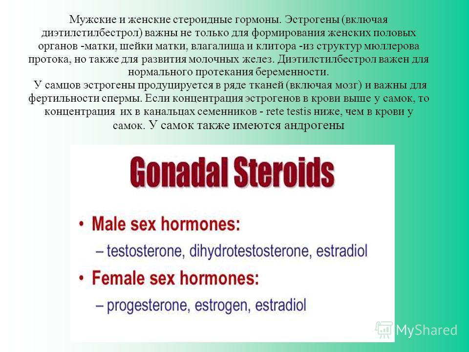 Мужские и женские стероидные гормоны. Эстрогены (включая диэтилстилбестрол) важны не только для формирования женских половых органов -матки, шейки матки, влагалища и клитора -из структур мюллерова протока, но также для развития молочных желез. Диэтил