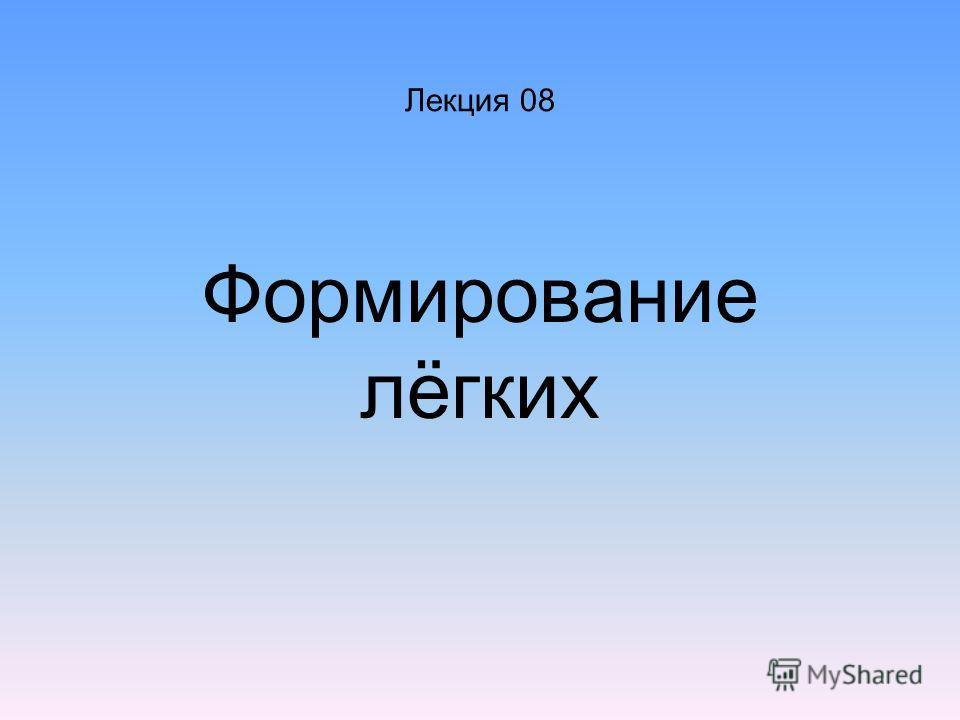Лекция 08 Формирование лёгких