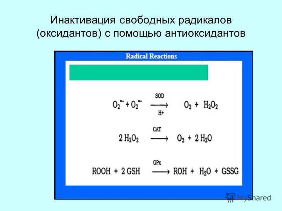 Инактивация свободных радикалов (оксидантов) с помощью антиоксидантов