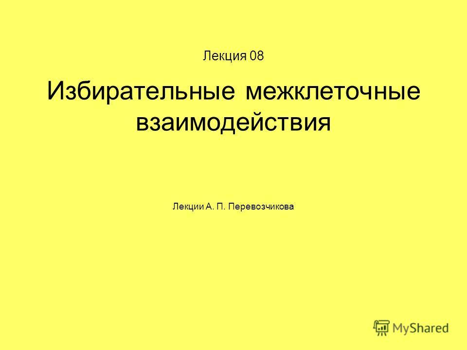 Лекция 08 Избирательные межклеточные взаимодействия Лекции А. П. Перевозчикова