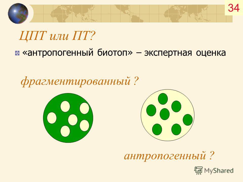 34 ЦПТ или ПТ? «антропогенный биотоп» – экспертная оценка фрагментированный ? антропогенный ?