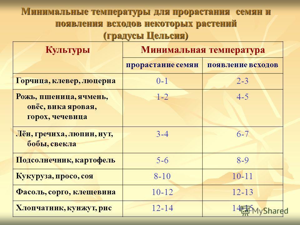 Минимальные температуры для прорастания семян и появления всходов некоторых растений (градусы Цельсия) КультурыМинимальная температура прорастание семянпоявление всходов Горчица, клевер, люцерна 0-12-3 Рожь, пшеница, ячмень, овёс, вика яровая, горох,