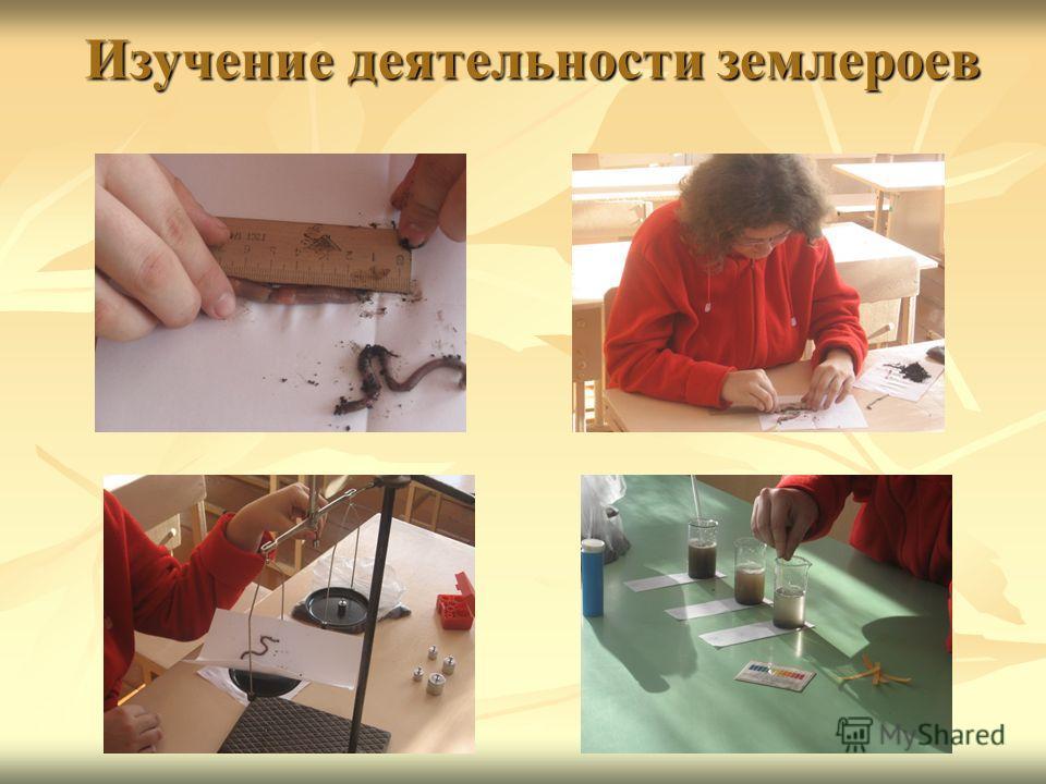 Изучение деятельности землероев