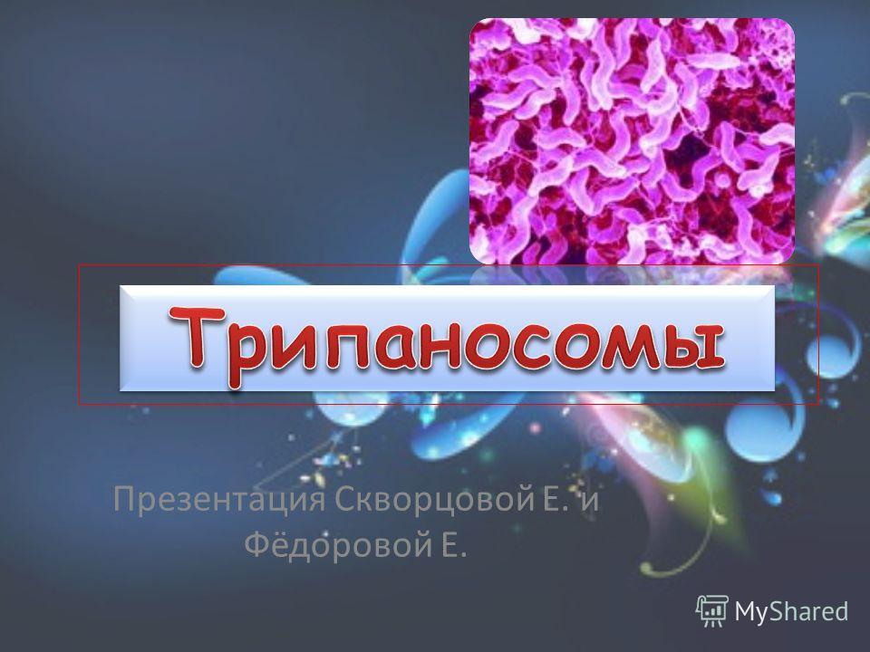 Презентация Скворцовой Е. и Фёдоровой Е.