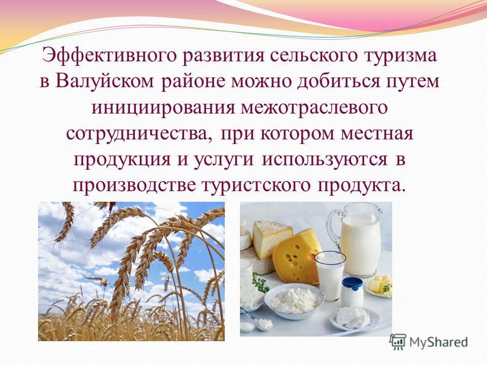 Эффективного развития сельского туризма в Валуйском районе можно добиться путем инициирования межотраслевого сотрудничества, при котором местная продукция и услуги используются в производстве туристского продукта.