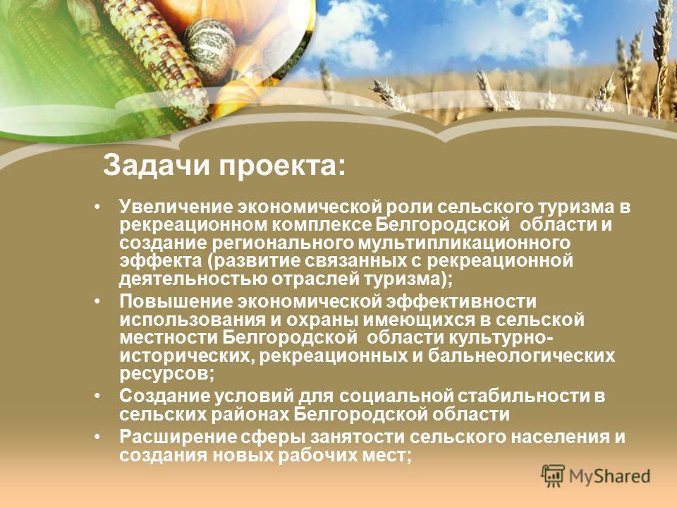 Задачи проекта: Увеличение экономической роли сельского туризма в рекреационном комплексе Белгородской области и создание регионального мультипликационного эффекта (развитие связанных с рекреационной деятельностью отраслей туризма); Повышение экономи