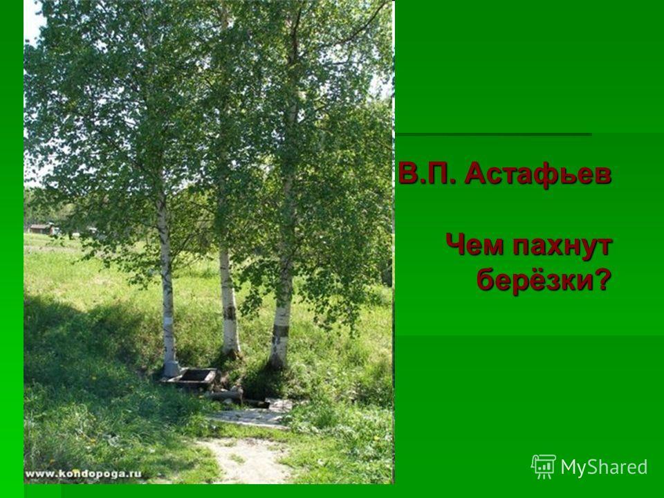 В.П. Астафьев Чем пахнут берёзки?
