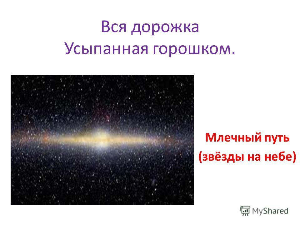 Вся дорожка Усыпанная горошком. Млечный путь (звёзды на небе)