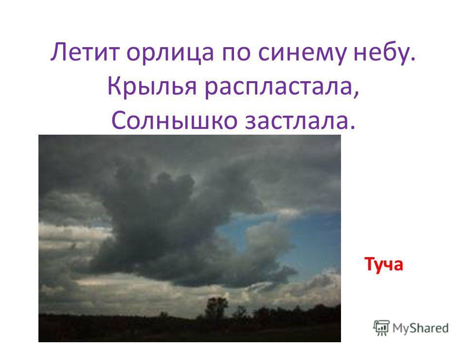 Летит орлица по синему небу. Крылья распластала, Солнышко застлала. Туча