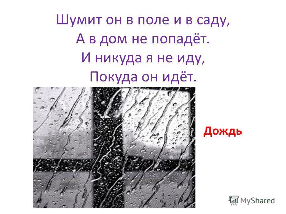 Шумит он в поле и в саду, А в дом не попадёт. И никуда я не иду, Покуда он идёт. Дождь