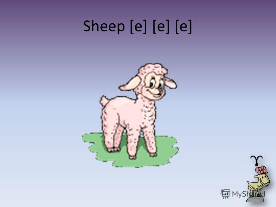 Sheep [e] [e] [e]