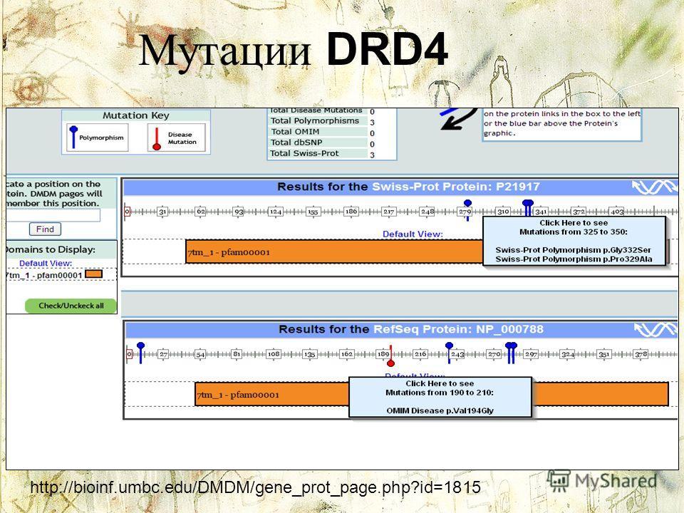Мутации DRD4 http://bioinf.umbc.edu/DMDM/gene_prot_page.php?id=1815