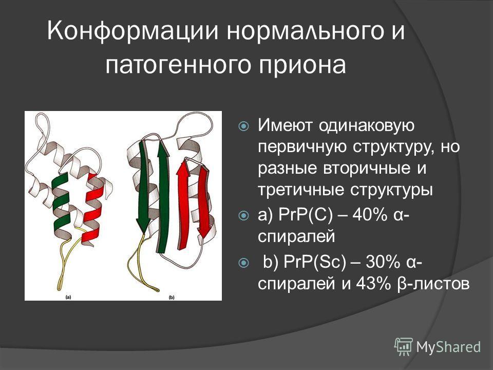 Конформации нормального и патогенного приона Имеют одинаковую первичную структуру, но разные вторичные и третичные структуры a) PrP(C) – 40% α- спиралей b) PrP(Sc) – 30% α- спиралей и 43% β-листов