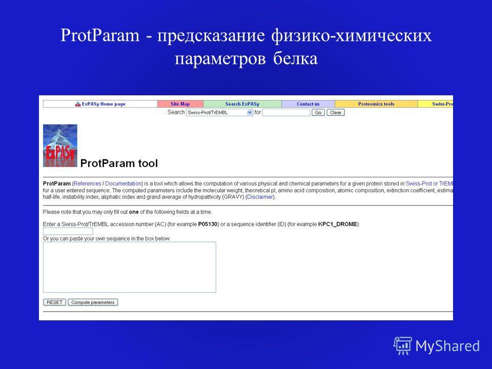 ProtParam - предсказание физико-химических параметров белка