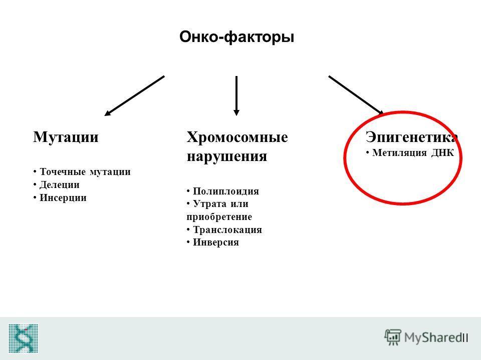 II Онко-факторы Мутации Точечные мутации Делеции Инсерции Хромосомные нарушения Полиплоидия Утрата или приобретение Транслокация Инверсия Эпигенетика Метиляция ДНК