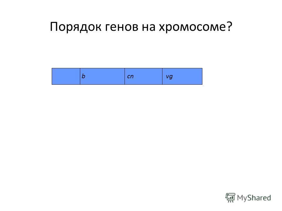 Порядок генов на хромосоме? bcnvg