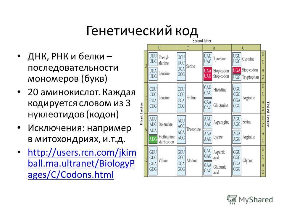 Генетический код ДНК, РНК и белки – последовательности мономеров (букв) 20 аминокислот. Каждая кодируется словом из 3 нуклеотидов (кодон) Исключения: например в митохондриях, и.т.д. http://users.rcn.com/jkim ball.ma.ultranet/BiologyP ages/C/Codons.ht