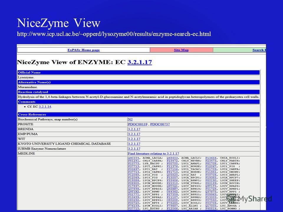 NiceZyme View http://www.icp.ucl.ac.be/~opperd/lysozyme00/results/enzyme-search-ec.html