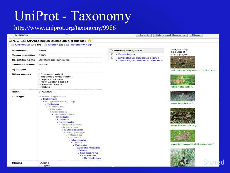 UniProt - Taxonomy http://www.uniprot.org/taxonomy/9986