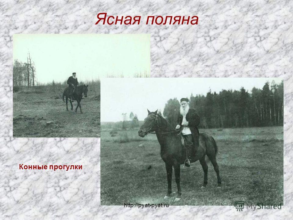 Ясная поляна Конные прогулки http://pyat-pyat.ru