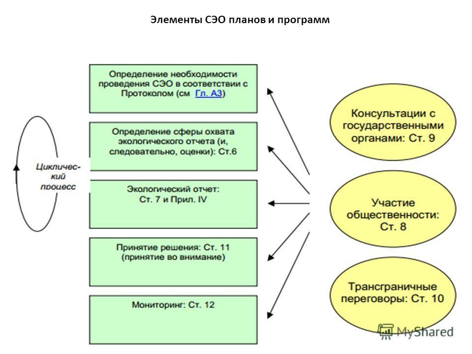 Элементы СЭО планов и программ