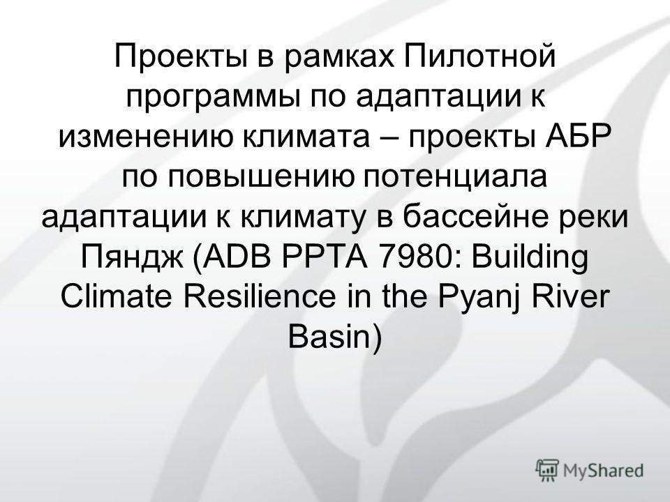Проекты в рамках Пилотной программы по адаптации к изменению климата – проекты АБР по повышению потенциала адаптации к климату в бассейне реки Пяндж (ADB PPTA 7980: Building Climate Resilience in the Pyanj River Basin)