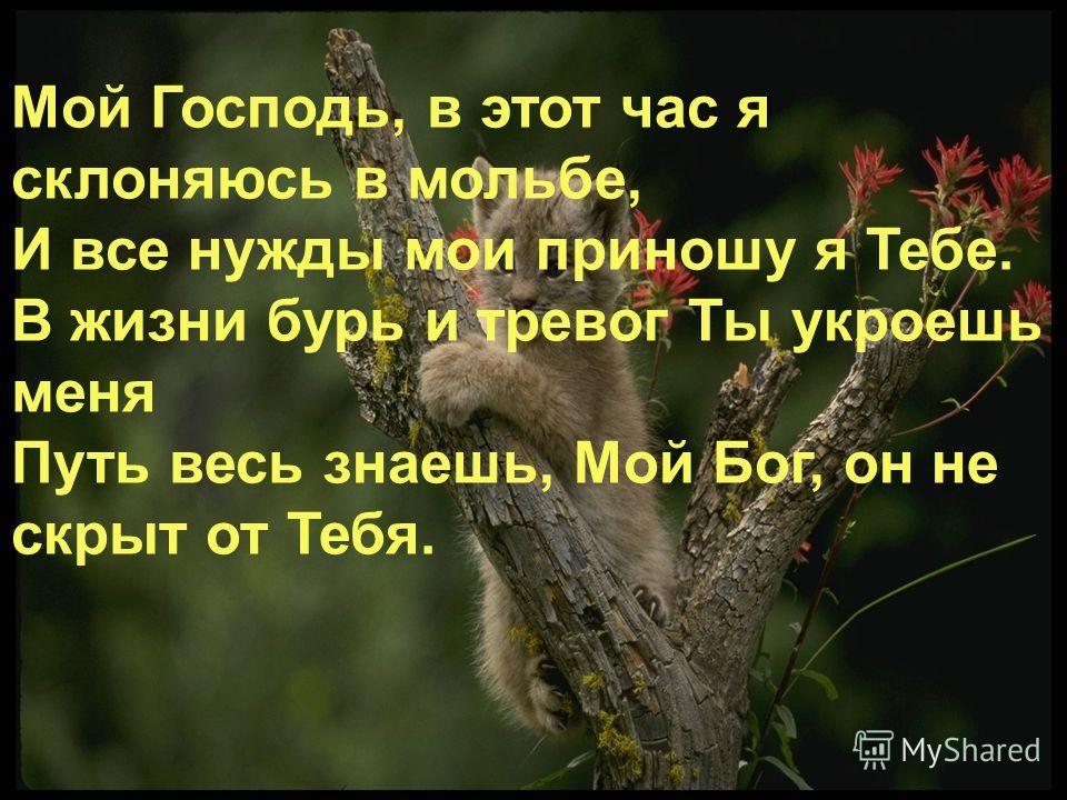 Мой Господь, в этот час я склоняюсь в мольбе, И все нужды мои приношу я Тебе. В жизни бурь и тревог Ты укроешь меня Путь весь знаешь, Мой Бог, он не скрыт от Тебя.