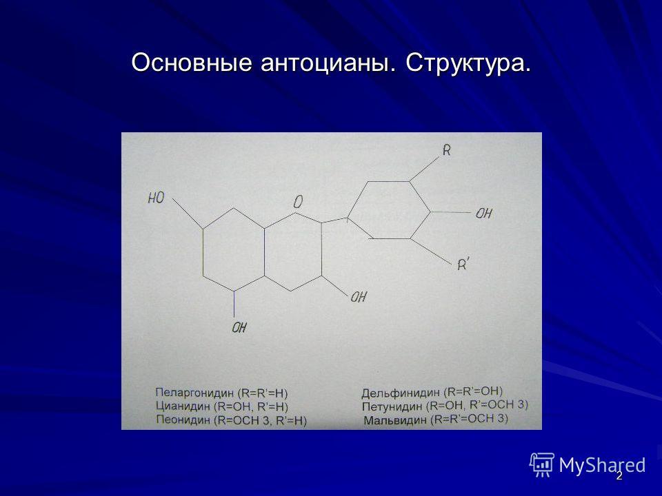 2 Основные антоцианы. Структура.