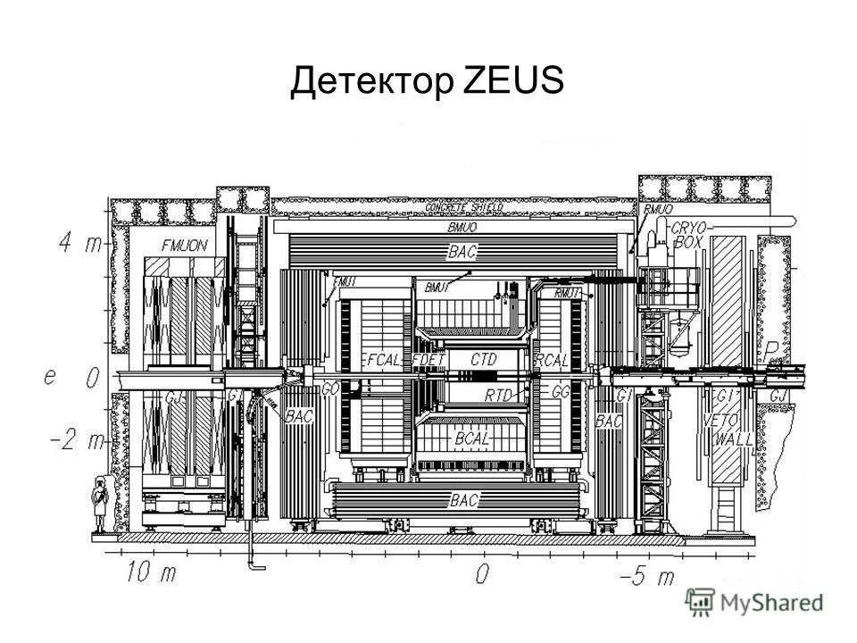 Детектор ZEUS