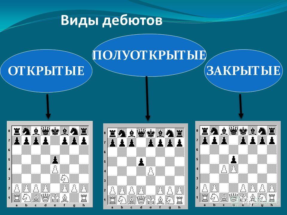 1.Быстрое развитие 2. Борьба за центр 3.Пешечная структура 4.Играть по твердому плану Правила дебюта