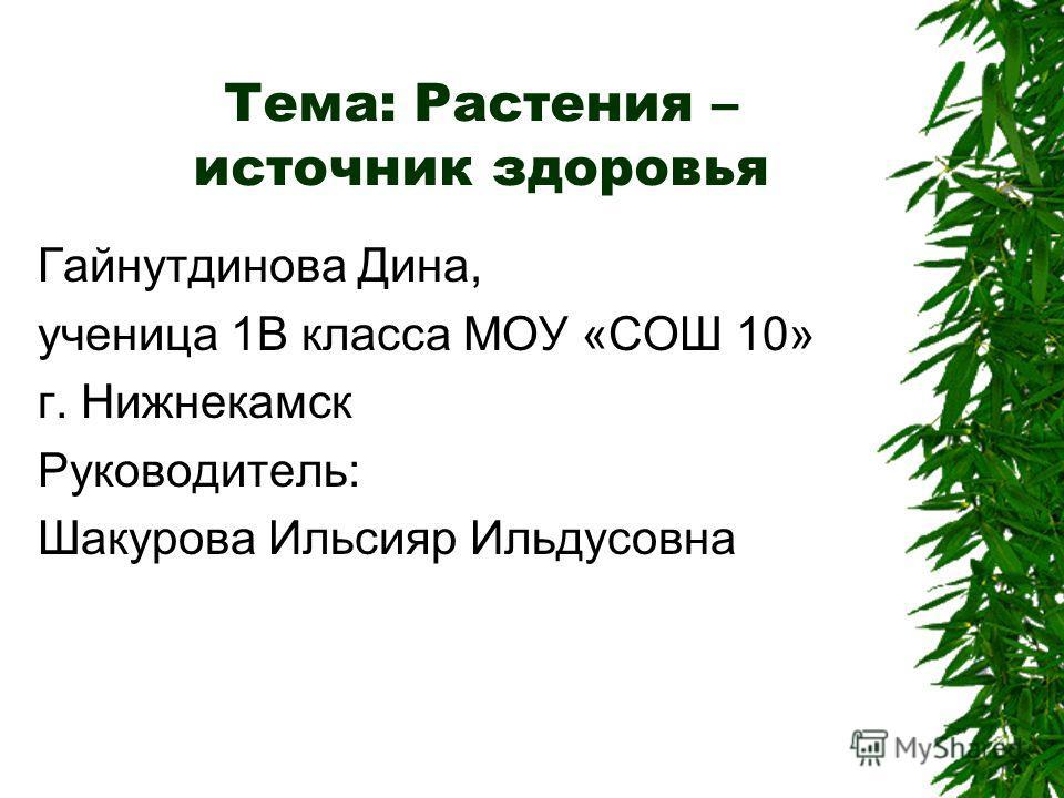 Тема: Растения – источник здоровья Гайнутдинова Дина, ученица 1В класса МОУ «СОШ 10» г. Нижнекамск Руководитель: Шакурова Ильсияр Ильдусовна